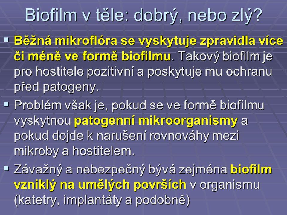 Biofilm v těle: dobrý, nebo zlý?  Běžná mikroflóra se vyskytuje zpravidla více či méně ve formě biofilmu. Takový biofilm je pro hostitele pozitivní a