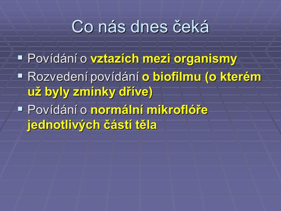 Biofilm jako zdroj dalšího šíření  Poté, co se biofilm vytvoří, uvolňují se z něj mikroorganismy, které pak mohou kolonizovat zase další povrchy, takže biofilm vzniká na dalších místech  Neodstraněný biofilm tedy představuje potenciální riziko pro vznik biofilmu na jiných místech
