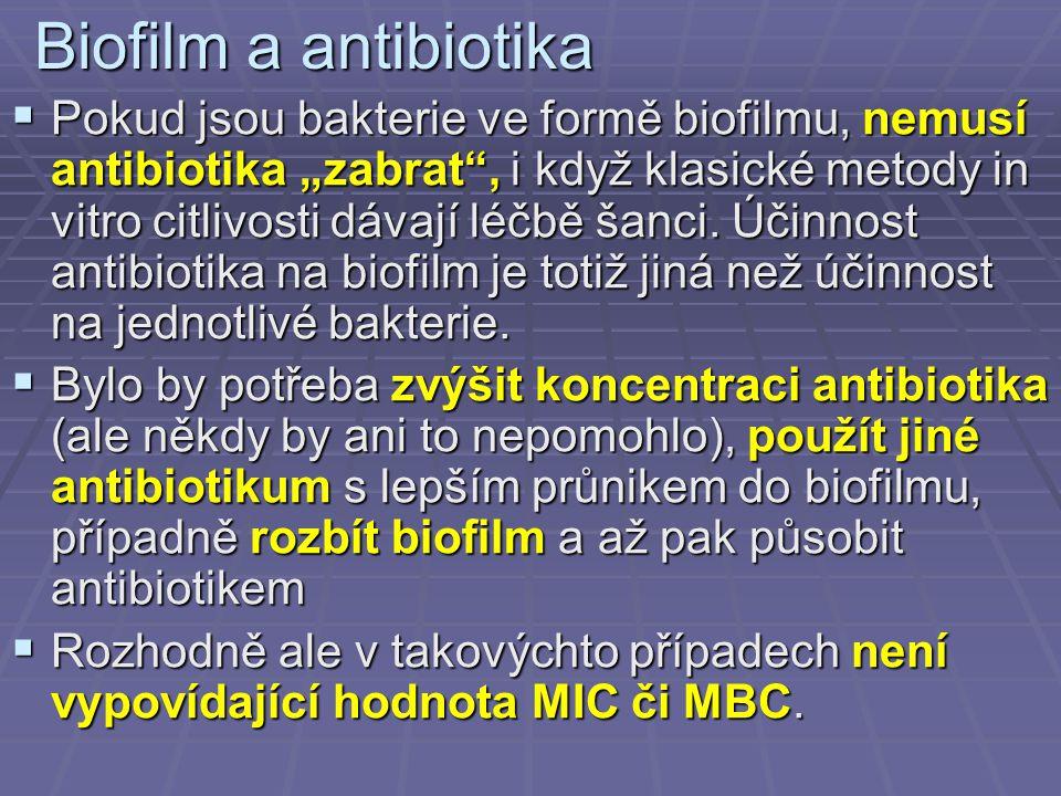"""Biofilm a antibiotika  Pokud jsou bakterie ve formě biofilmu, nemusí antibiotika """"zabrat"""", i když klasické metody in vitro citlivosti dávají léčbě ša"""