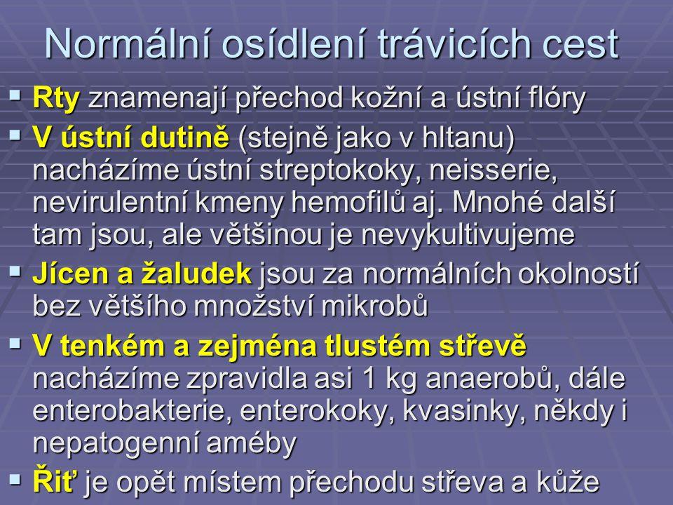 Normální osídlení trávicích cest  Rty znamenají přechod kožní a ústní flóry  V ústní dutině (stejně jako v hltanu) nacházíme ústní streptokoky, neis