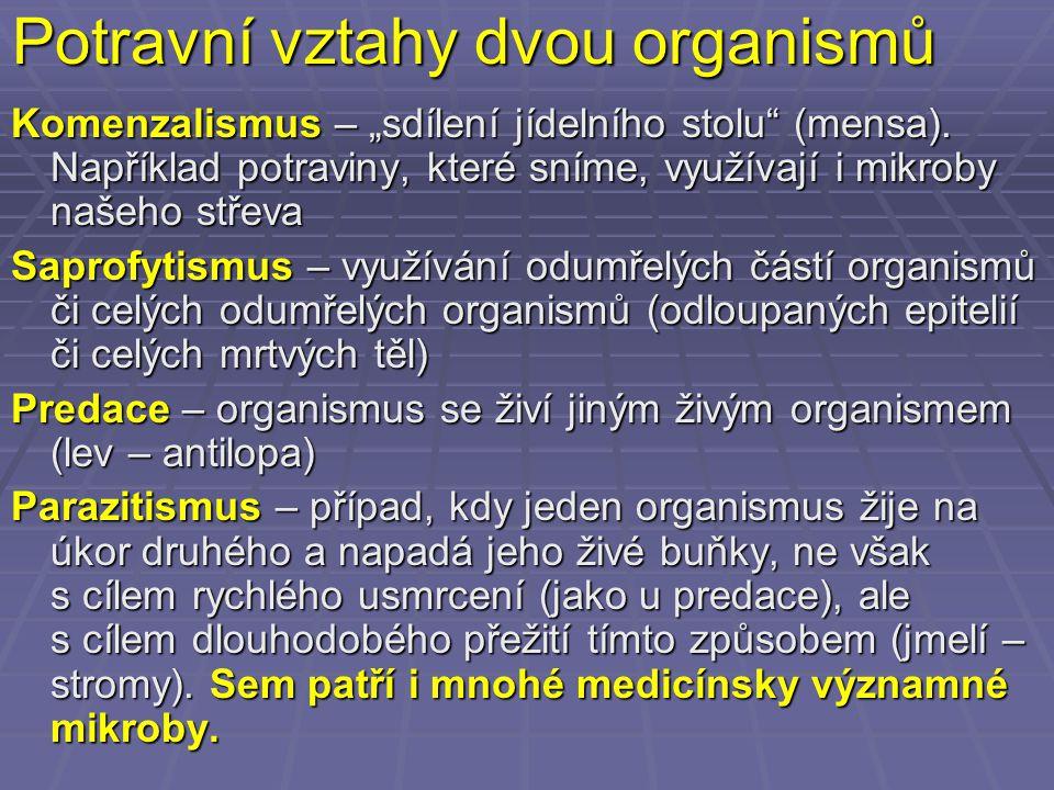 """Potravní vztahy dvou organismů Komenzalismus – """"sdílení jídelního stolu"""" (mensa). Například potraviny, které sníme, využívají i mikroby našeho střeva"""