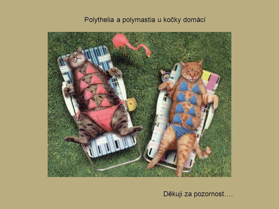 Polythelia a polymastia u kočky domácí Děkuji za pozornost….