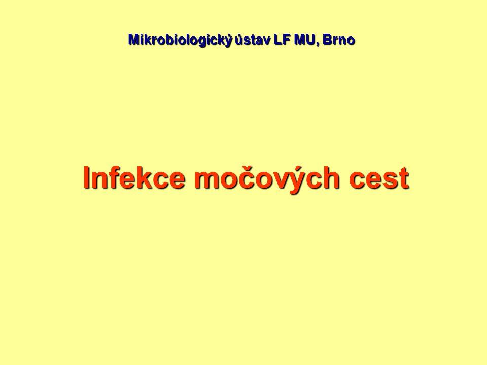 Mikrobiologický ústav LF MU, Brno Infekce močových cest