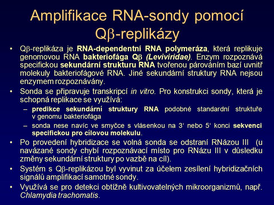Amplifikace RNA-sondy pomocí Q  -replikázy Q  -replikáza je RNA-dependentní RNA polymeráza, která replikuje genomovou RNA bakteriofága Q  (Leviviri