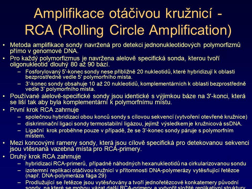 Amplifikace otáčivou kružnicí - RCA (Rolling Circle Amplification) Metoda amplifikace sondy navržená pro detekci jednonukleotidových polymorfizmů přím