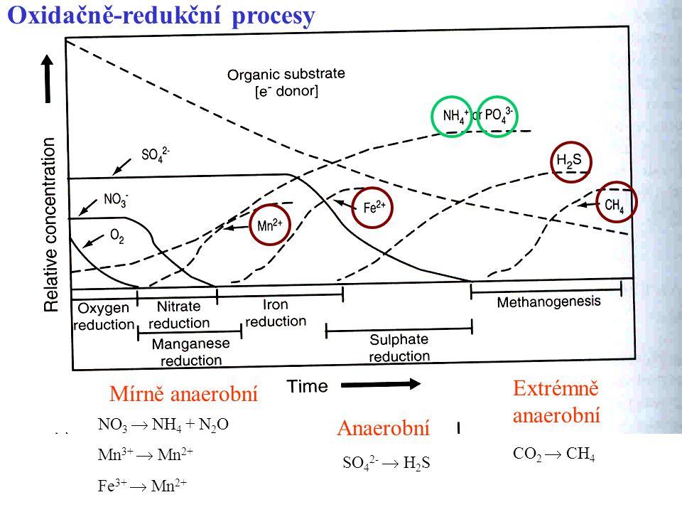 Oxidačně-redukční procesy Mírně anaerobní NO 3  NH 4 + N 2 O Mn 3+  Mn 2+ Fe 3+  Mn 2+ Anaerobní SO 4 2-  H 2 S Extrémně anaerobní CO 2  CH 4 Hranice mezi těmito 3 stupni se liší podle pH .