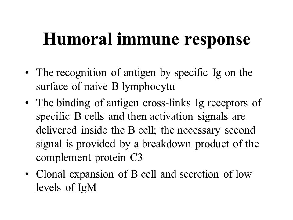 Humoral immune response The recognition of antigen by specific Ig on the surface of naive B lymphocytu The binding of antigen cross-links Ig receptors of specific B cells and then activation signals are delivered inside the B cell; the necessary second signal is provided by a breakdown product of the complement protein C3 Clonal expansion of B cell and secretion of low levels of IgM