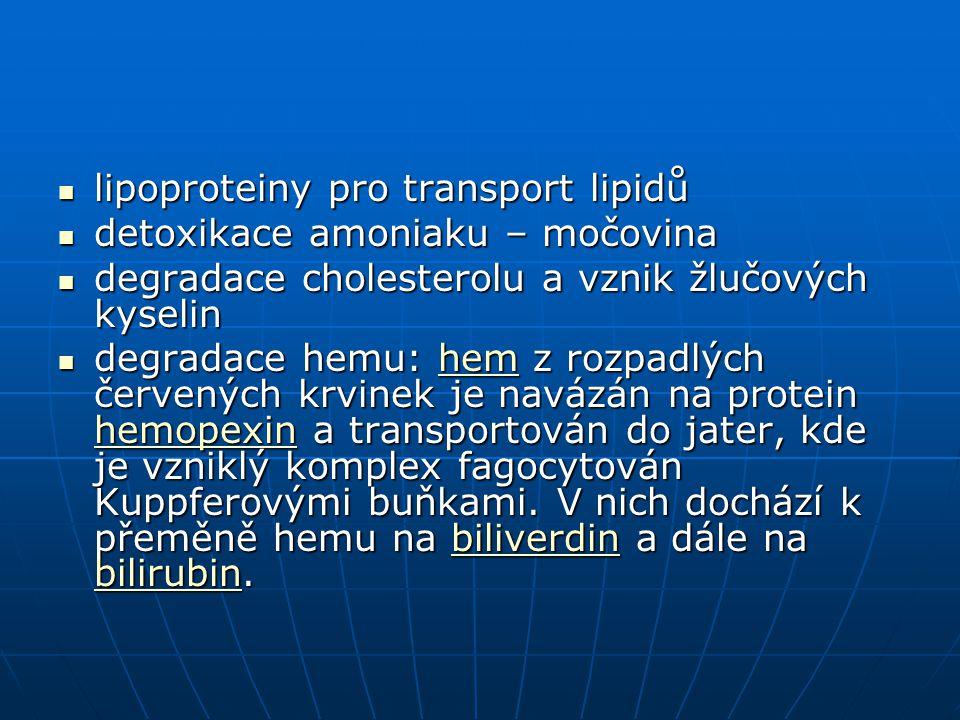 lipoproteiny pro transport lipidů lipoproteiny pro transport lipidů detoxikace amoniaku – močovina detoxikace amoniaku – močovina degradace cholestero