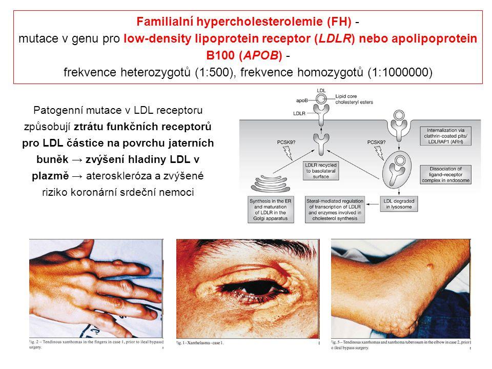 Familialní hypercholesterolemie (FH) - mutace v genu pro low-density lipoprotein receptor (LDLR) nebo apolipoprotein B100 (APOB) - frekvence heterozyg