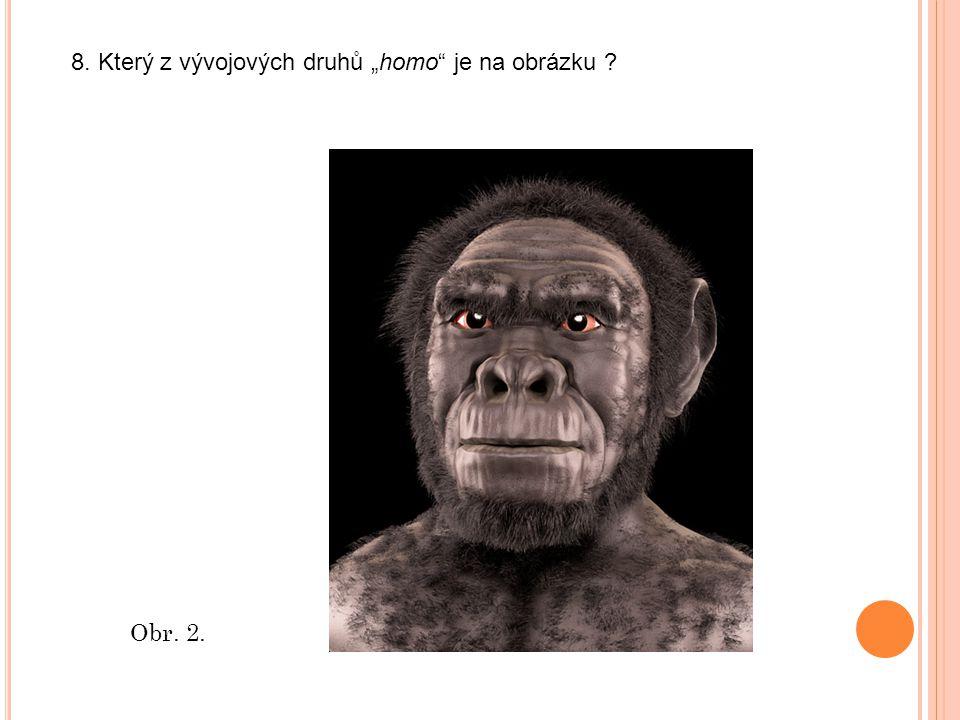 """Obr. 2. 8. Který z vývojových druhů """"homo je na obrázku"""