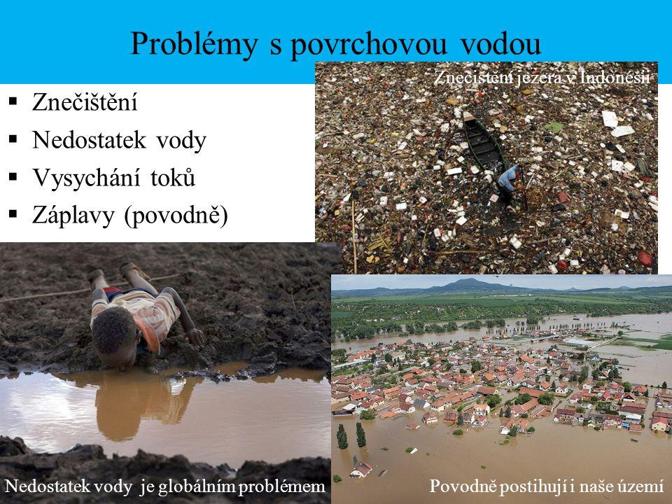 Problémy s povrchovou vodou  Znečištění  Nedostatek vody  Vysychání toků  Záplavy (povodně) Znečištění jezera v Indonésii Nedostatek vody je globá