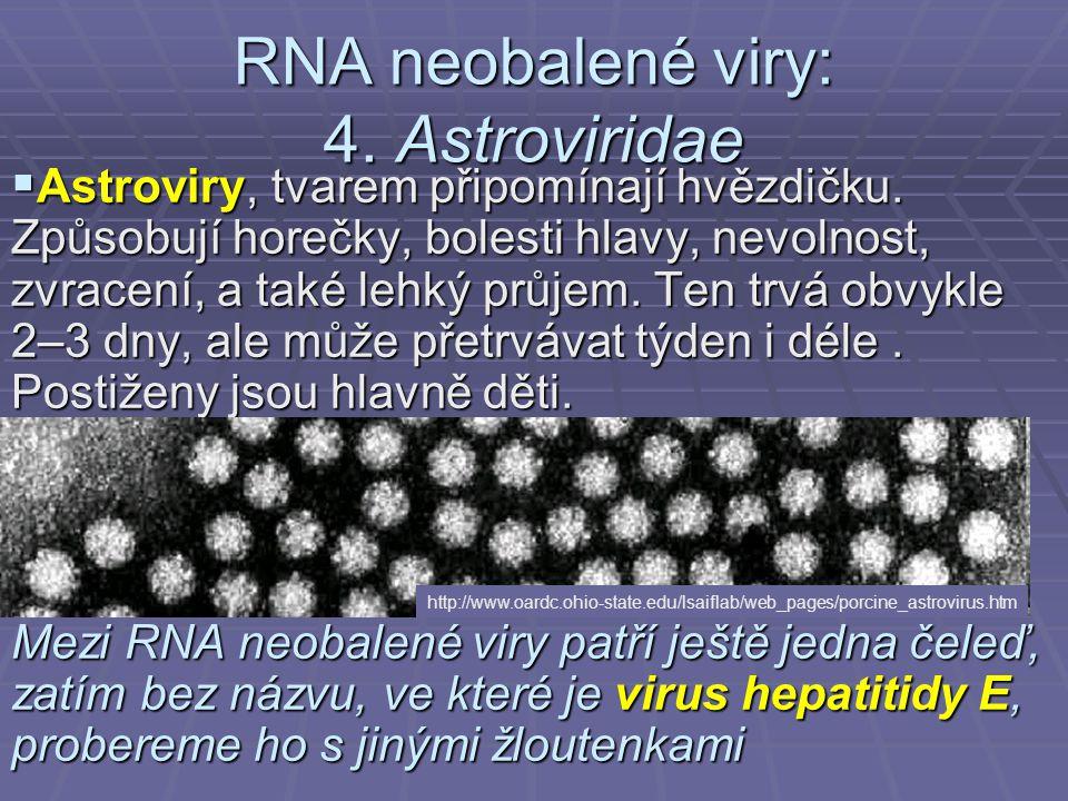 RNA neobalené viry: 4.Astroviridae  Astroviry, tvarem připomínají hvězdičku.