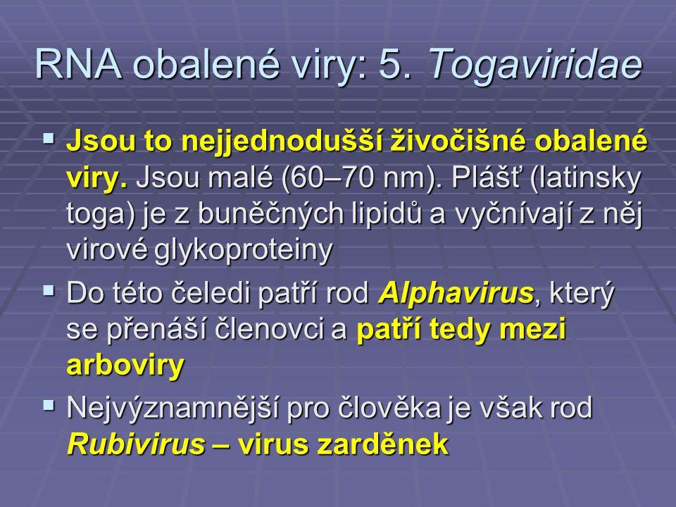 RNA obalené viry: 5.Togaviridae  Jsou to nejjednodušší živočišné obalené viry.
