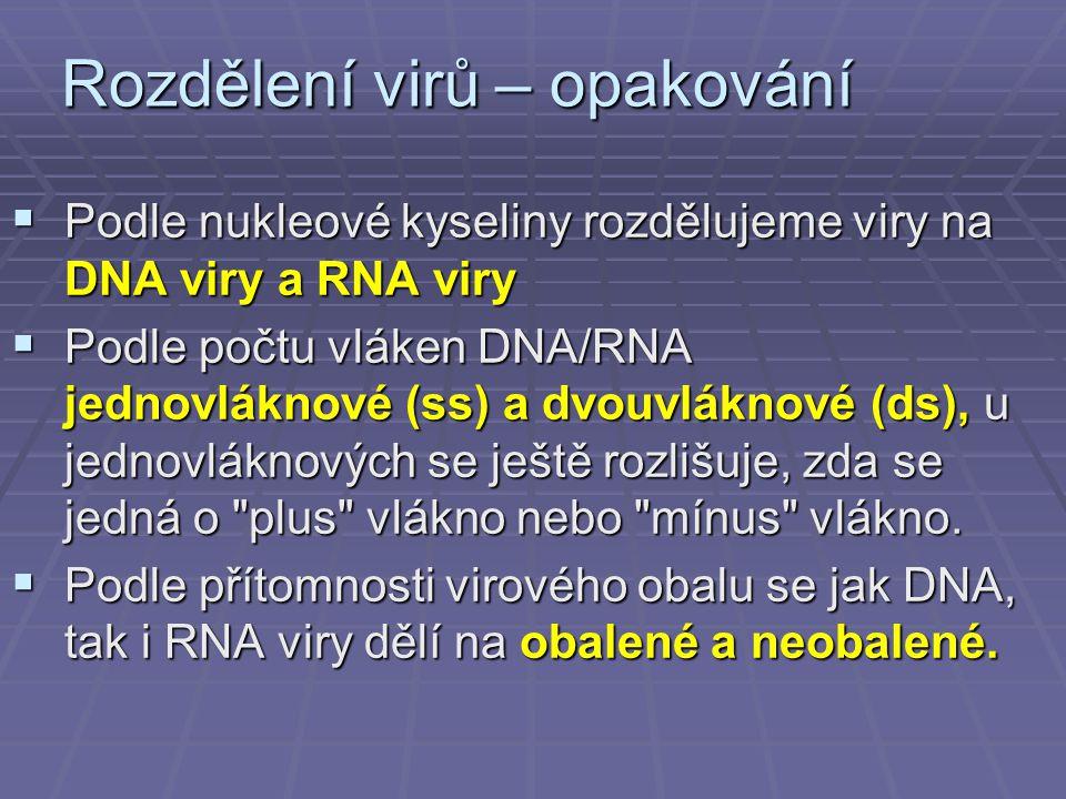 Rozdělení virů – opakování  Podle nukleové kyseliny rozdělujeme viry na DNA viry a RNA viry  Podle počtu vláken DNA/RNA jednovláknové (ss) a dvouvláknové (ds), u jednovláknových se ještě rozlišuje, zda se jedná o plus vlákno nebo mínus vlákno.