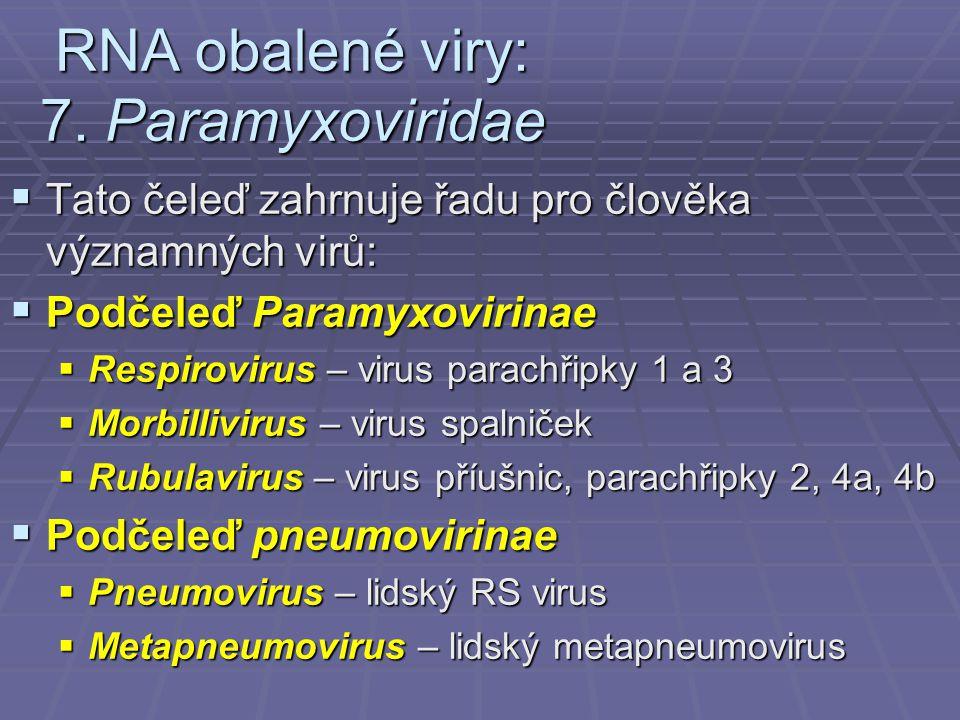 RNA obalené viry: 7.