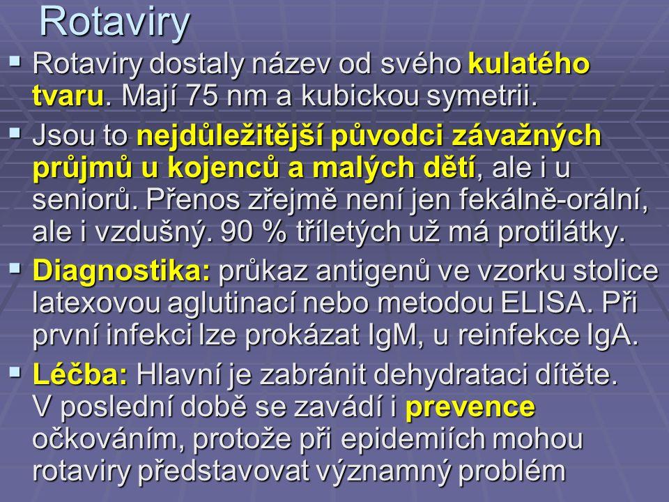 Výskyt hepatitidy E virology-online.com/viruses/HepatitisE.htm