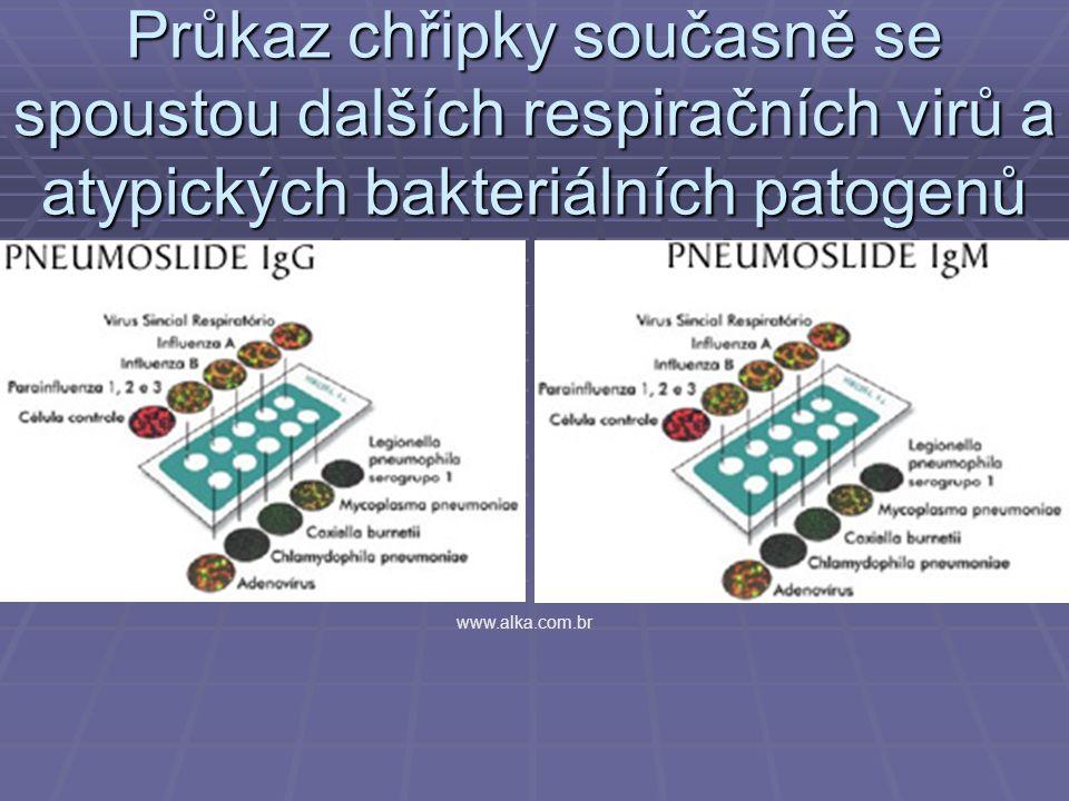 Průkaz chřipky současně se spoustou dalších respiračních virů a atypických bakteriálních patogenů www.alka.com.br
