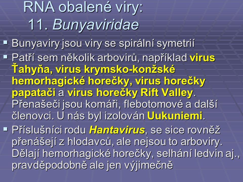 RNA obalené viry: 11.