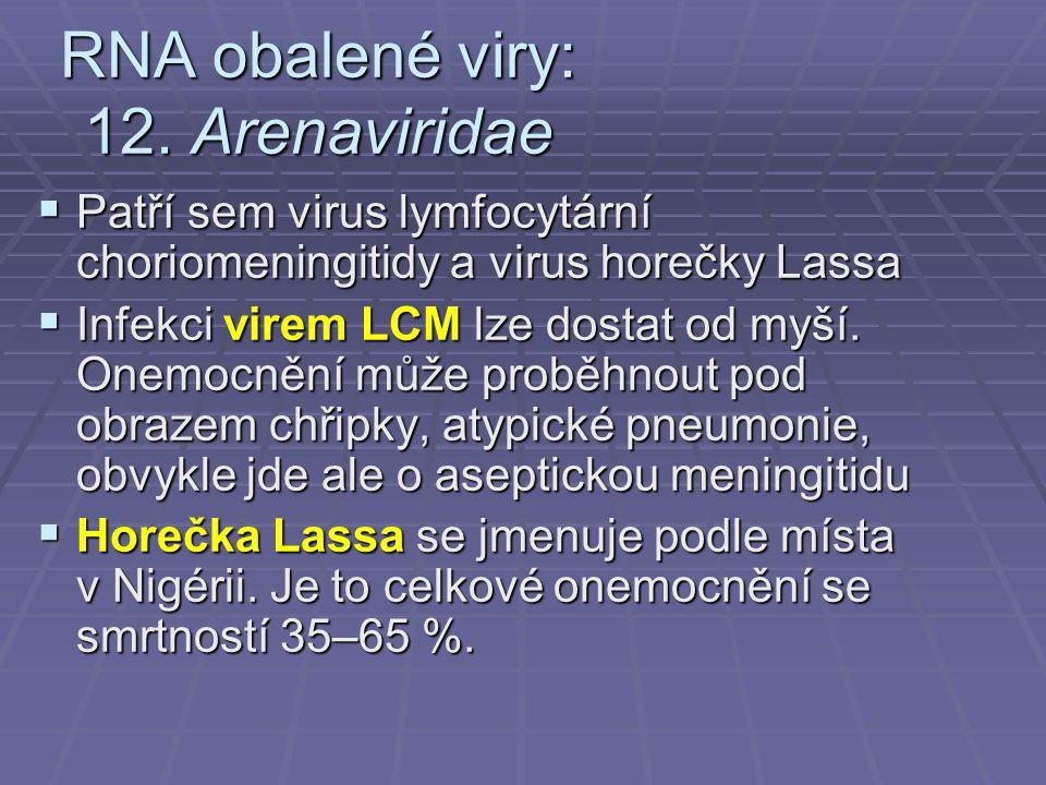 RNA obalené viry: 12.