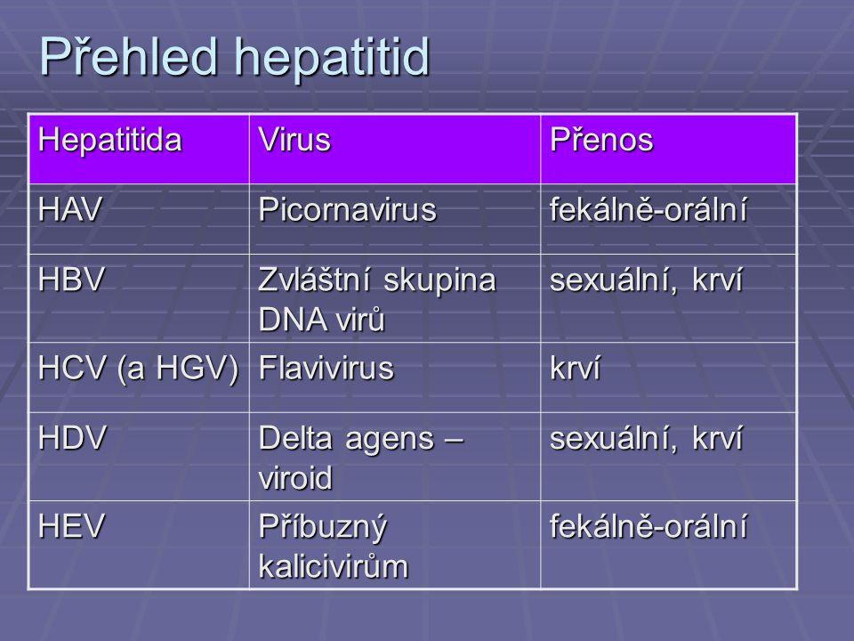 Přehled hepatitid HepatitidaVirusPřenos HAVPicornavirusfekálně-orální HBV Zvláštní skupina DNA virů sexuální, krví HCV (a HGV) Flaviviruskrví HDV Delta agens – viroid sexuální, krví HEV Příbuzný kalicivirům fekálně-orální