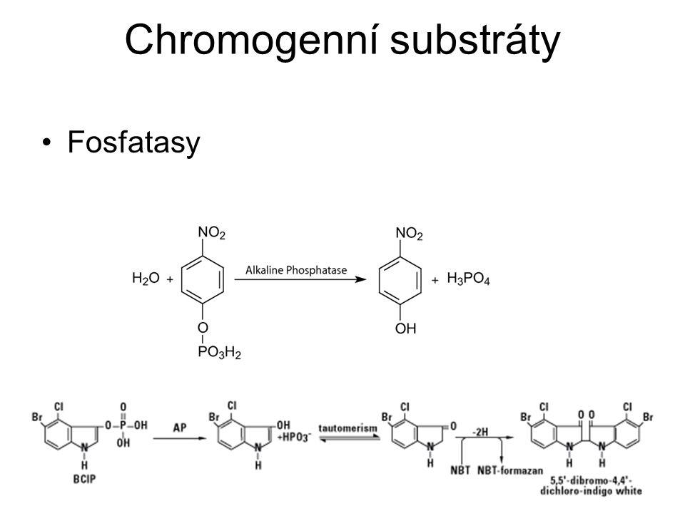 Chromogenní substráty Fosfatasy