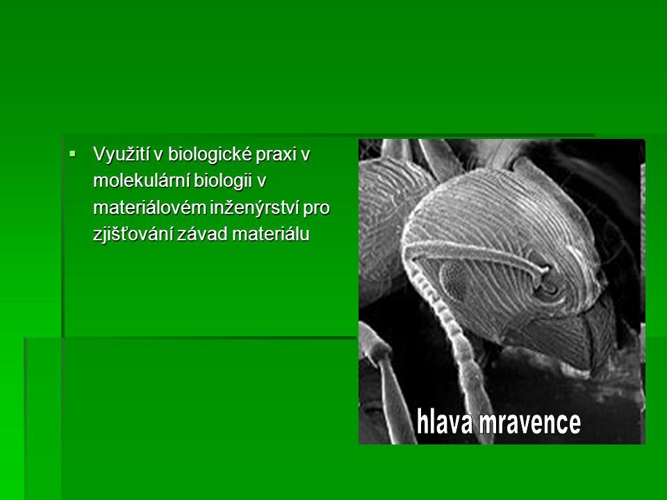  Využití v biologické praxi v molekulární biologii v materiálovém inženýrství pro zjišťování závad materiálu