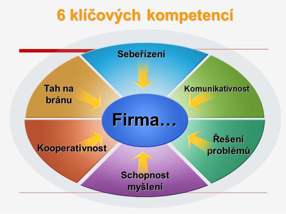 Téma III. Ostatní personální analýzy a nástroje k jejich realizaci 1.Analýzy potřeb v programech výcviku, vzdělávání a rozvoje kompetencí Sledují dosa