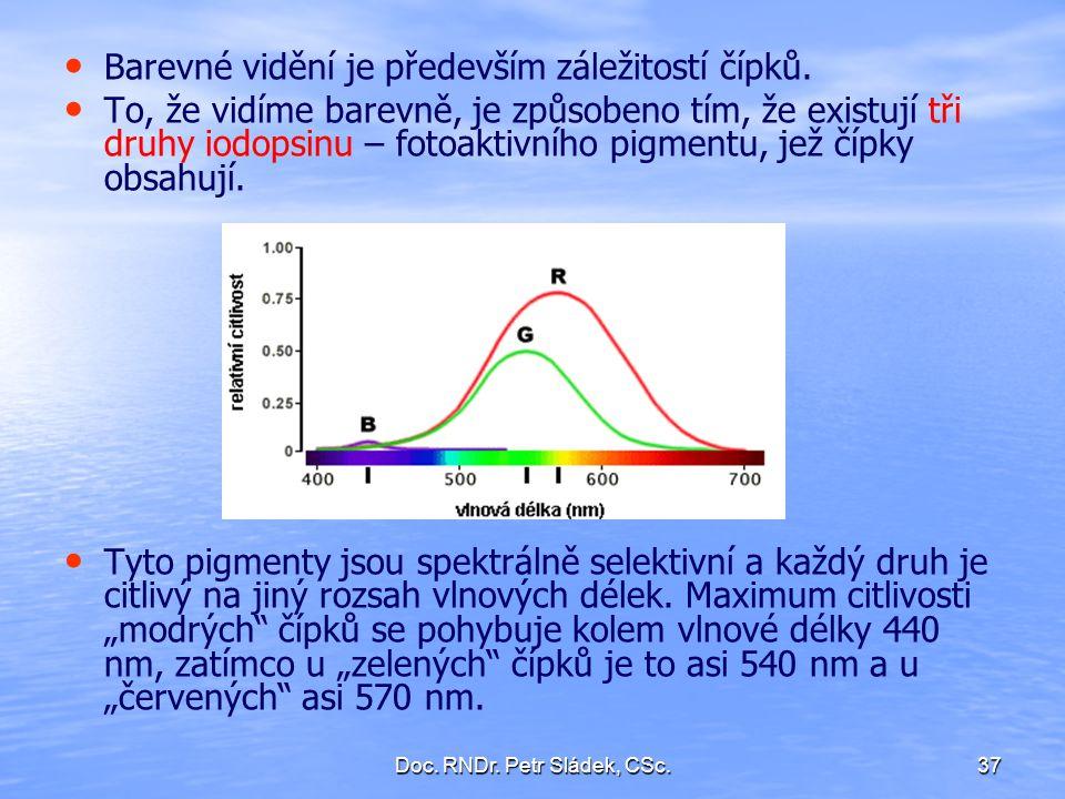 Doc. RNDr. Petr Sládek, CSc.37 Barevné vidění je především záležitostí čípků. To, že vidíme barevně, je způsobeno tím, že existují tři druhy iodopsinu
