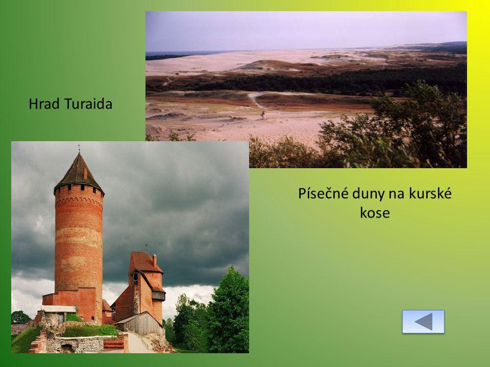 Písečné duny na kurské kose Hrad Turaida