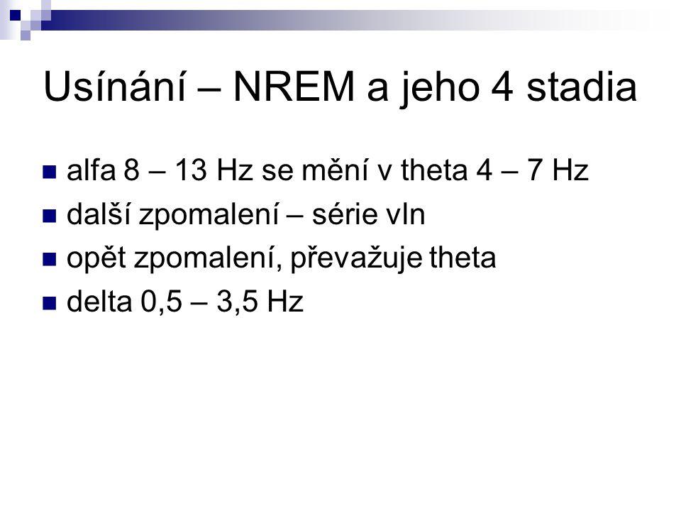 Usínání – NREM a jeho 4 stadia alfa 8 – 13 Hz se mění v theta 4 – 7 Hz další zpomalení – série vln opět zpomalení, převažuje theta delta 0,5 – 3,5 Hz
