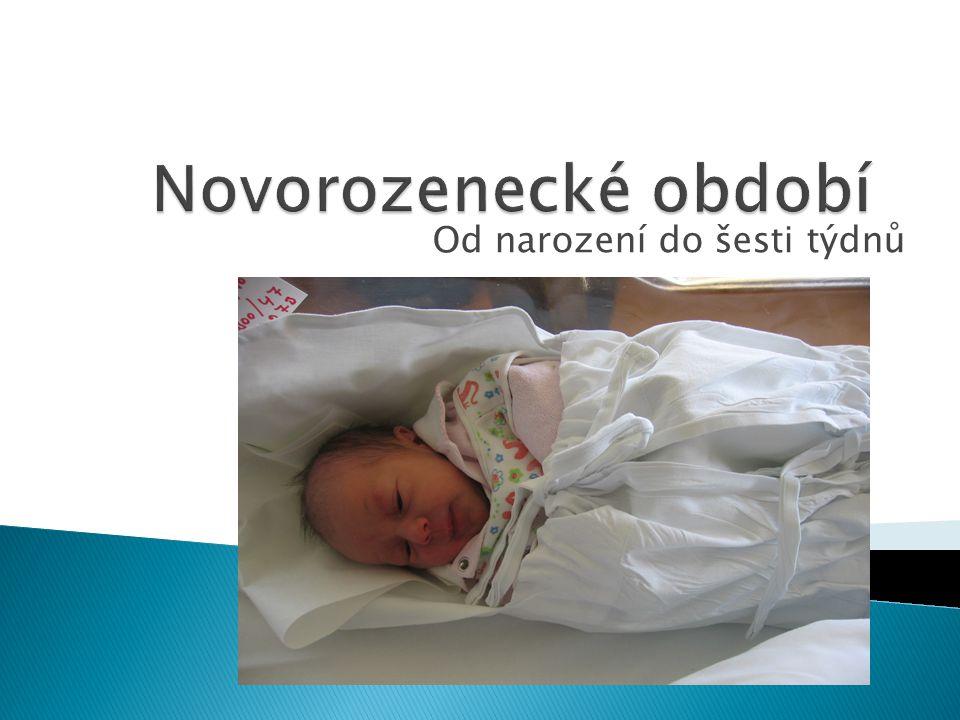 Od narození do šesti týdnů