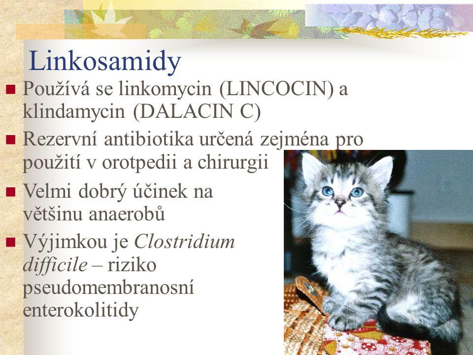 Linkosamidy Používá se linkomycin (LINCOCIN) a klindamycin (DALACIN C) Rezervní antibiotika určená zejména pro použití v orotpedii a chirurgii Velmi d