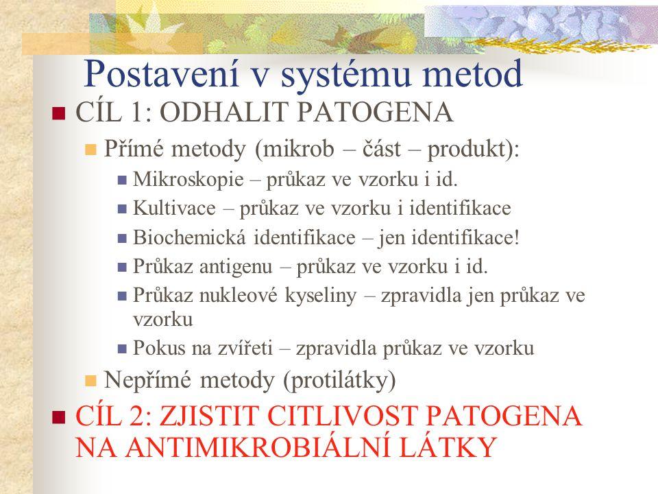 Betalaktamová antibiotika Působení na buněčnou stěnu Jsou baktericidní, působí však jen na rostoucí bakterie, které si budují stěnu Jsou téměř netoxické (lidské buňky stěnu nemají), ale mohou alergizovat Patří sem: Peniciliny Cefalosporiny Monobaktamy Karbapenemy