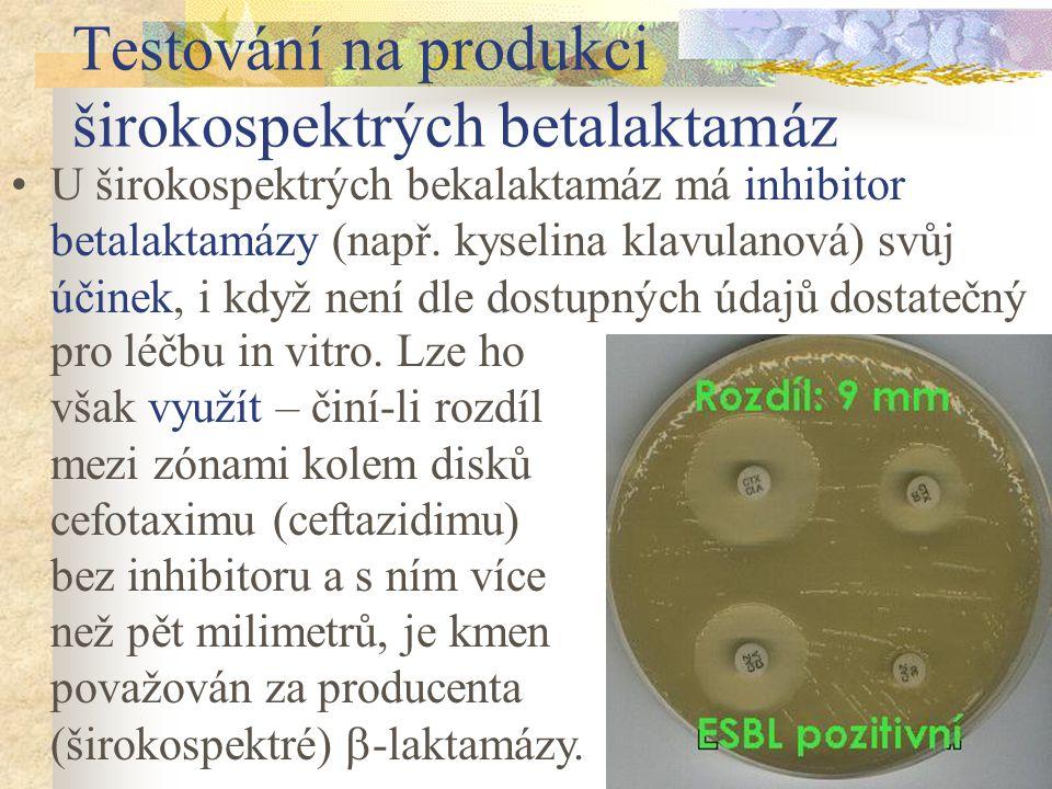Testování na produkci širokospektrých betalaktamáz U širokospektrých bekalaktamáz má inhibitor betalaktamázy (např. kyselina klavulanová) svůj účinek,