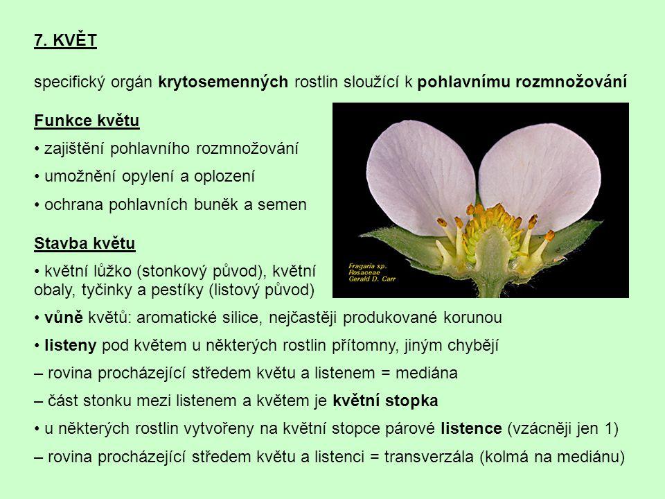 postavení květů na stonku: vrcholové nebo úžlabní umístění květů: na květní stopce, přisedlé, vnořené nejmenší květy: v průměru od 0,5 mm (Wolffia) největší květy: 1 m (Rafflesia), u nás velké květy: rostliny z rodů Nymphaea, Colchicum, Cypripedium http://www.abecedazahrady.cz /Default.aspx?section=61&server=1&article=195 http://delta-intkey.com /angio/images/lemna840.gif http://www.mobot.org/jwcross/duckweed /flowering-dormancy.htm http://waynesword.palomar.edu/plmar96.htm Wolffia australiana MF, DF = listy Pi = pistillodium (zakrnělý pestík) A1, A2 = tyčinky měřítko: 0,25 mm Ananas – vnořené květy v komůrkách za šupinami > botanika.bf.jcu.cz/morfologie/Cypripedium2.jpg /fotogalerie-nahledy.php?family=Nymphaeaceae http://botanika.bf.jcu.cz/materials