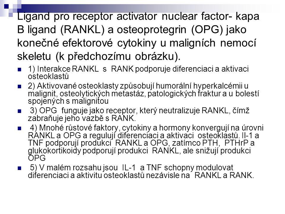 Ligand pro receptor activator nuclear factor- kapa B ligand (RANKL) a osteoprotegrin (OPG) jako konečné efektorové cytokiny u maligních nemocí skeletu