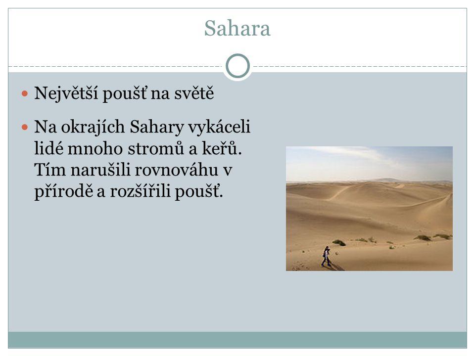 Sahara Největší poušť na světě Na okrajích Sahary vykáceli lidé mnoho stromů a keřů.