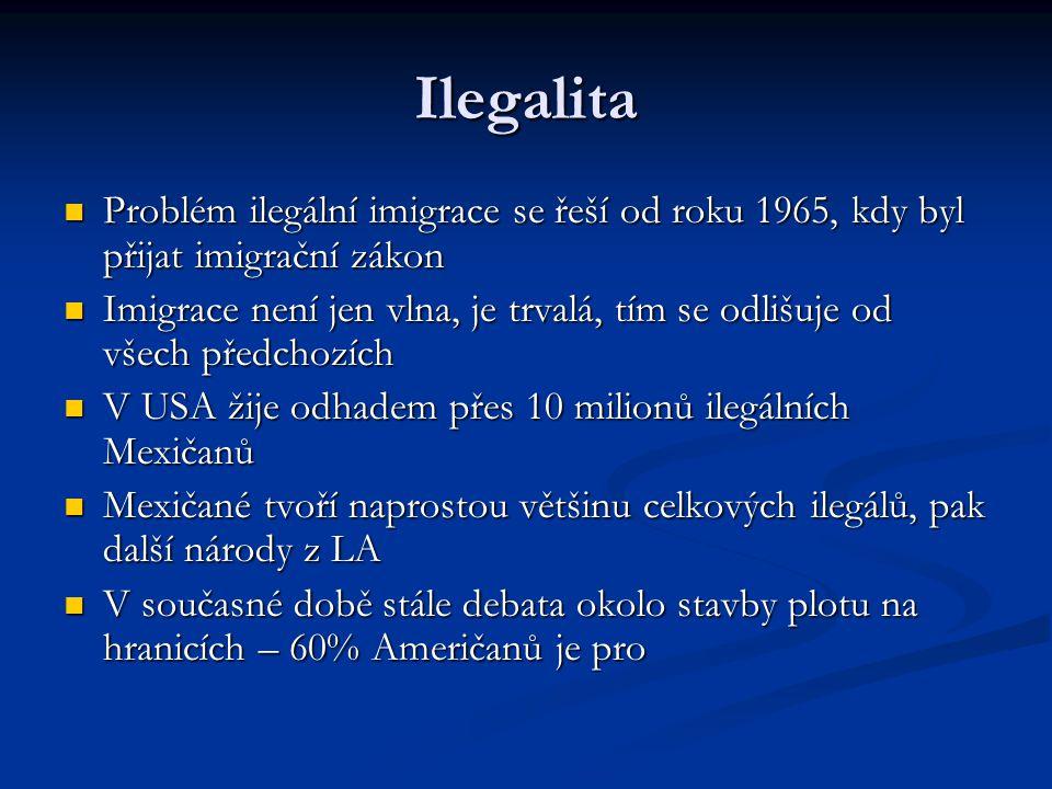 Ilegalita Problém ilegální imigrace se řeší od roku 1965, kdy byl přijat imigrační zákon Problém ilegální imigrace se řeší od roku 1965, kdy byl přija