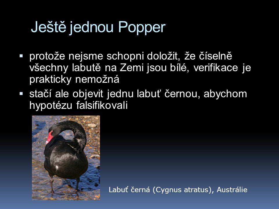 Ještě jednou Popper  protože nejsme schopni doložit, že číselně všechny labutě na Zemi jsou bílé, verifikace je prakticky nemožná  stačí ale objevit