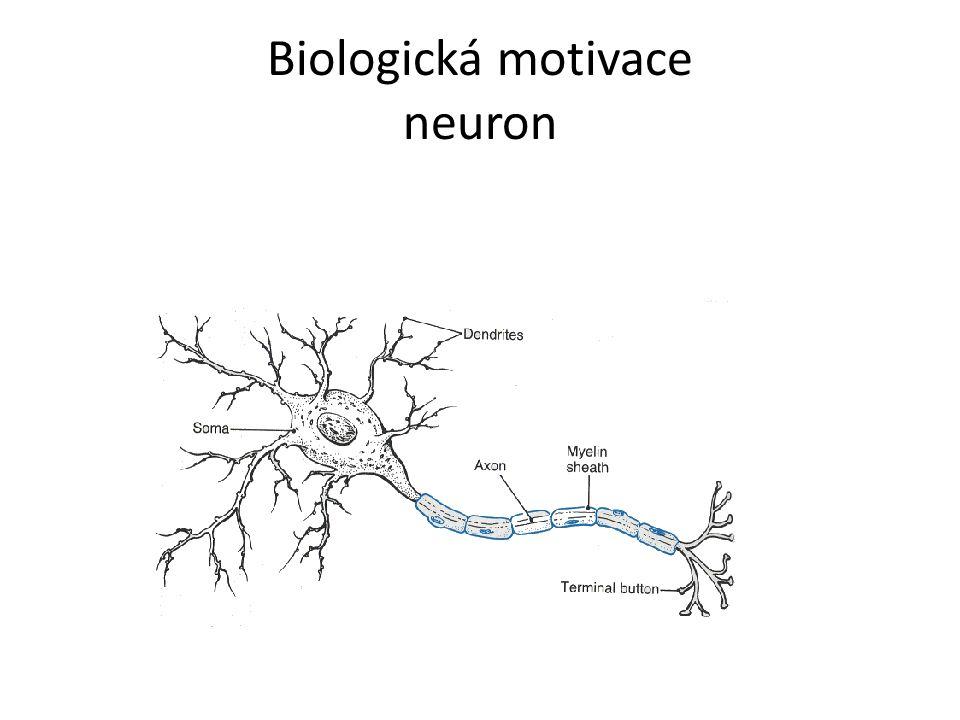 Proces učení neuronových sítí Pro učení (trénování NS) je třeba mít dostatek reprezentativních příkladů Trénovací, výběrová, testovací množina Na začátku učení bývají váhy nejčastěji nastaveny na náhodná čísla Proces učení se snaží minimalizovat odchylku (chybu) mezi skutečným (aktuálním) a požadovaným výstupem Každá neuronová síť má jiný algoritmus učení, vesměs jsou to ale iterační procesy