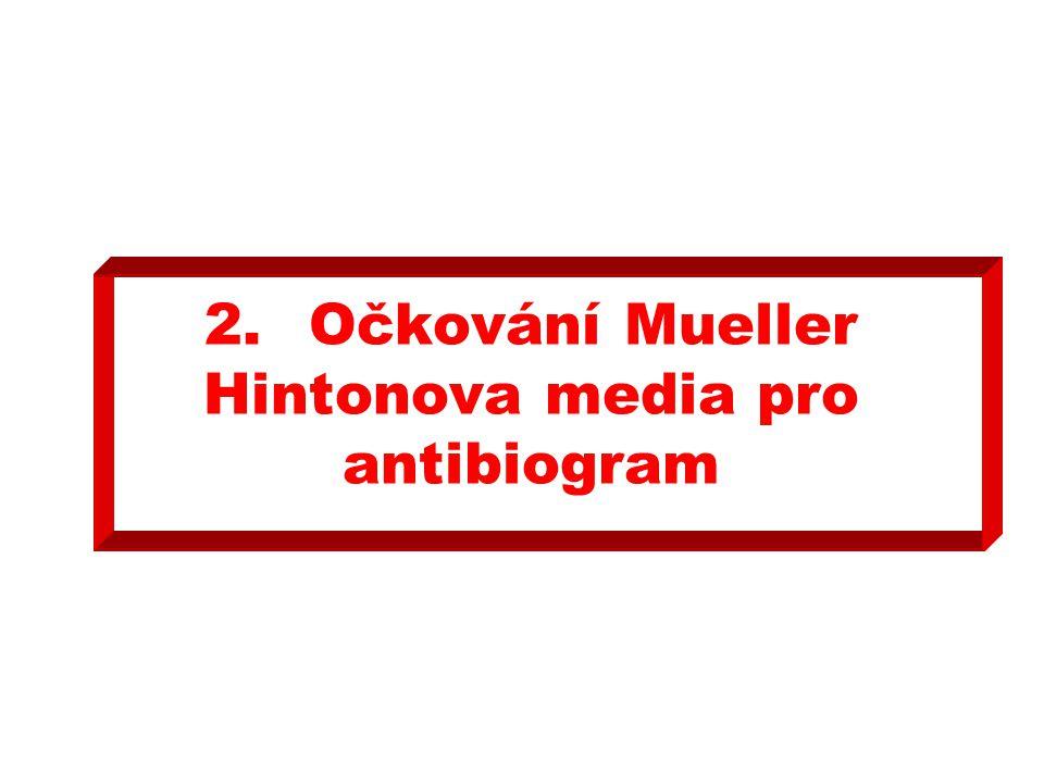 2.Očkování Mueller Hintonova media pro antibiogram