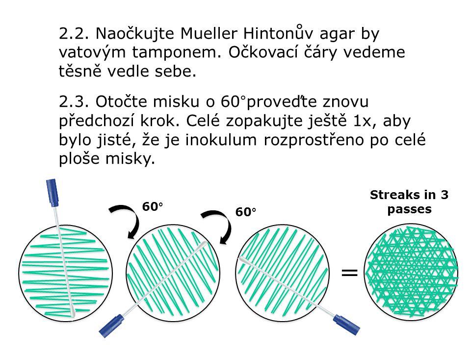 2.2. Naočkujte Mueller Hintonův agar by vatovým tamponem. Očkovací čáry vedeme těsně vedle sebe. 2.3. Otočte misku o 60°proveďte znovu předchozí krok.