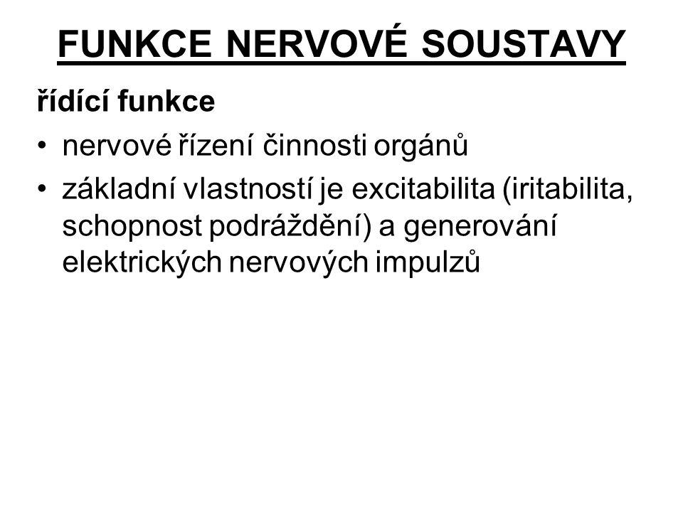 FUNKCE NERVOVÉ SOUSTAVY řídící funkce nervové řízení činnosti orgánů základní vlastností je excitabilita (iritabilita, schopnost podráždění) a generov