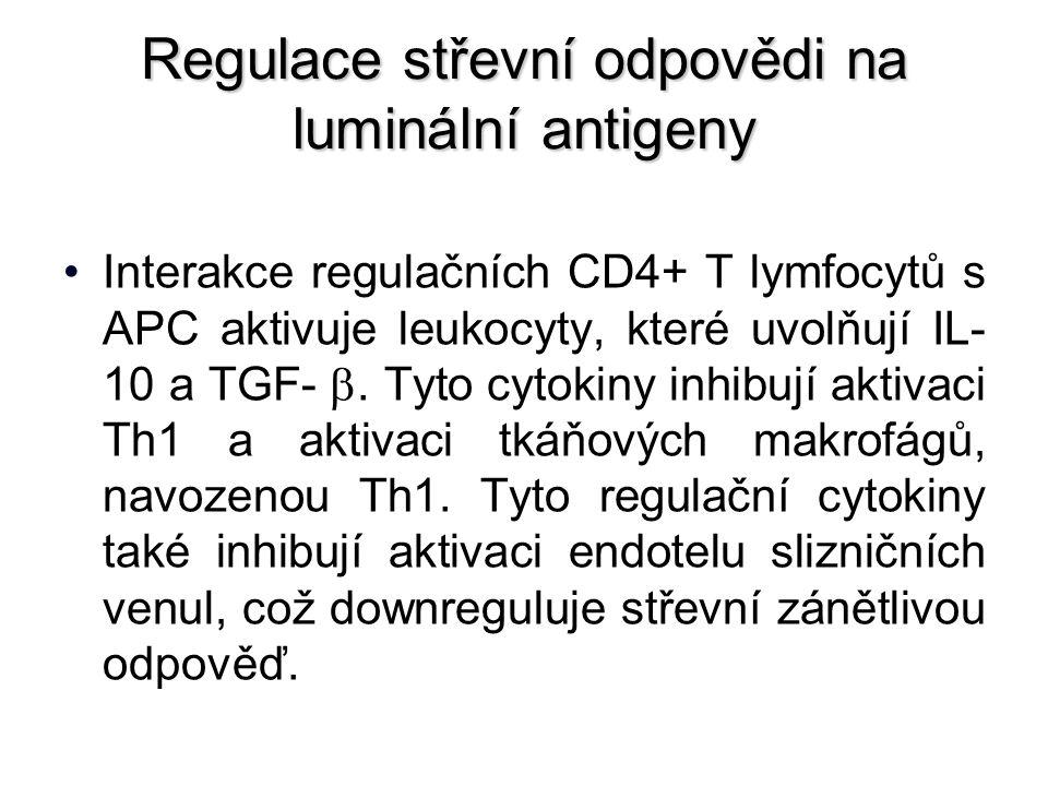 Regulace střevní odpovědi na luminální antigeny Interakce regulačních CD4+ T lymfocytů s APC aktivuje leukocyty, které uvolňují IL- 10 a TGF- .
