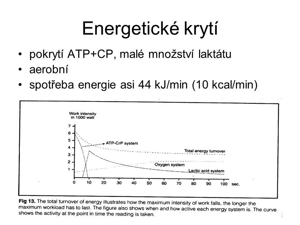 Energetické krytí pokrytí ATP+CP, malé množství laktátu aerobní spotřeba energie asi 44 kJ/min (10 kcal/min)