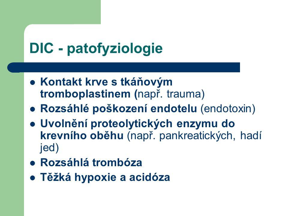 DIC - patofyziologie Kontakt krve s tkáňovým tromboplastinem (např. trauma) Rozsáhlé poškození endotelu (endotoxin) Uvolnění proteolytických enzymu do