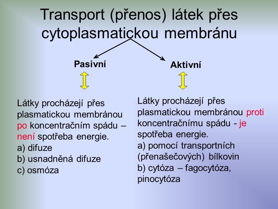 Transport (přenos) látek přes cytoplasmatickou membránu Pasivní Aktivní Látky procházejí přes plasmatickou membránou po koncentračním spádu – není spotřeba energie.