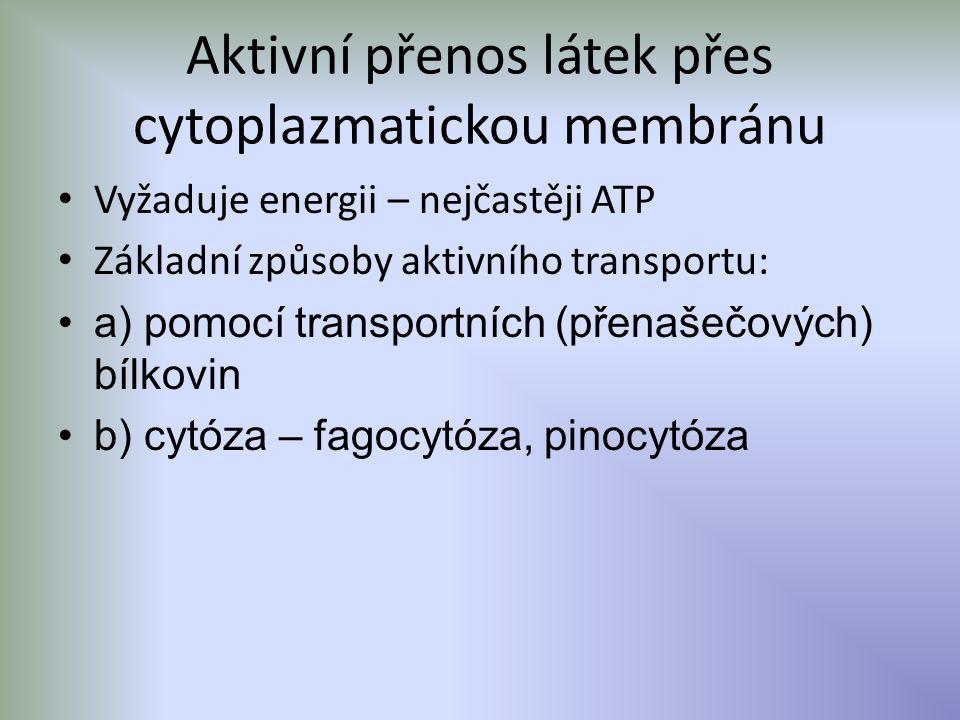 Aktivní přenos látek přes cytoplazmatickou membránu Vyžaduje energii – nejčastěji ATP Základní způsoby aktivního transportu: a) pomocí transportních (přenašečových) bílkovin b) cytóza – fagocytóza, pinocytóza