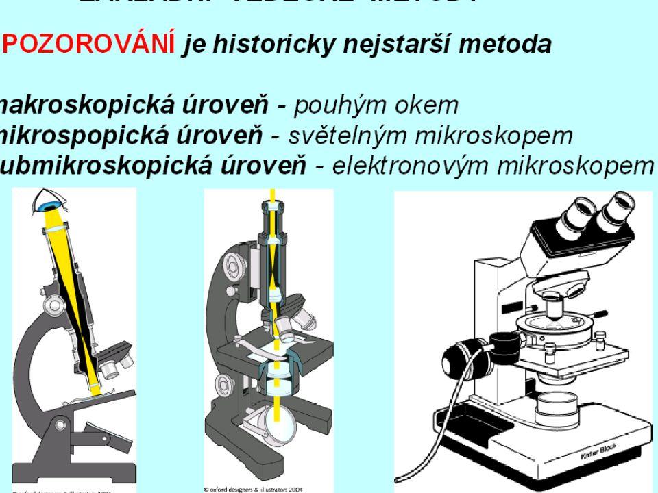"""Mitochondrie Je to """"elektrárna buňky – zdroj energie - vznikají zde molekuly ATP."""