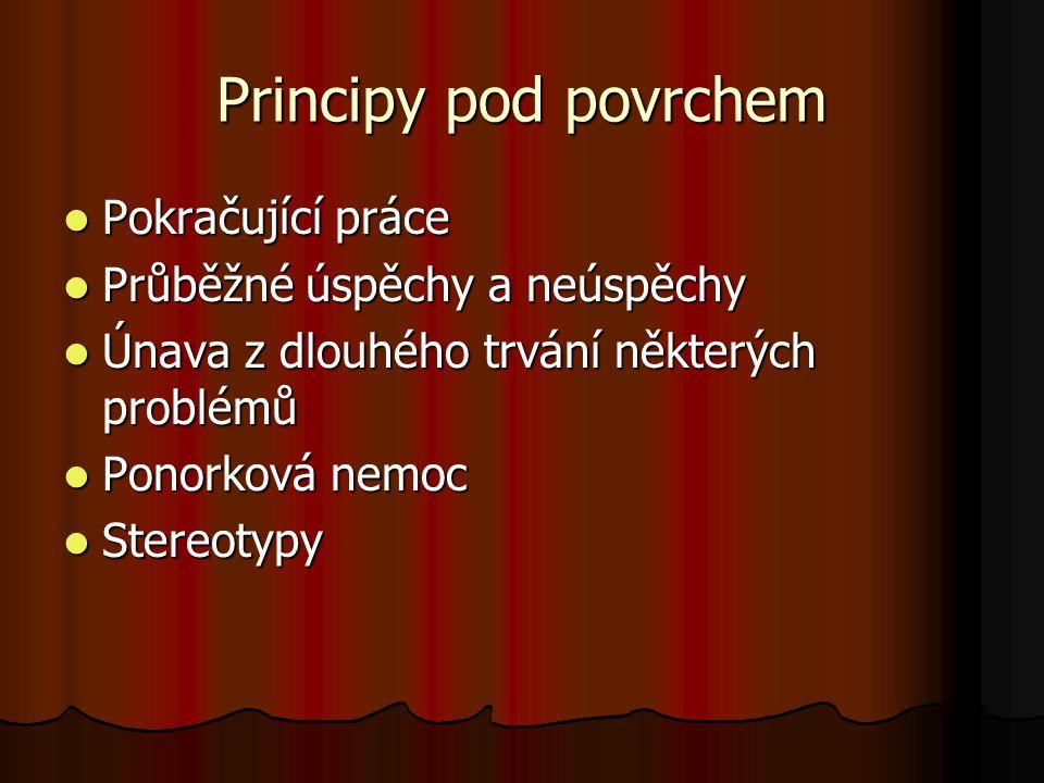 Principy pod povrchem Pokračující práce Pokračující práce Průběžné úspěchy a neúspěchy Průběžné úspěchy a neúspěchy Únava z dlouhého trvání některých problémů Únava z dlouhého trvání některých problémů Ponorková nemoc Ponorková nemoc Stereotypy Stereotypy